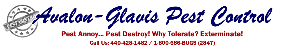 avalon glavis pest wildlife extermination control services ashtabula lake ohio